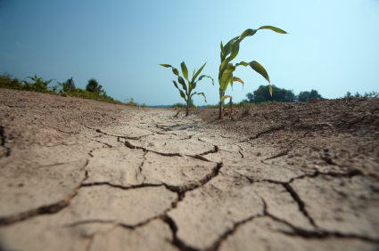 DROUGHT-1