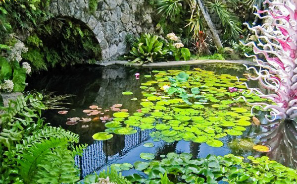 Coral gables pure tropical ambiance fairchild tropical garden for Fairchild tropical botanic garden