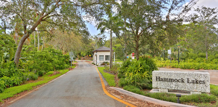Hammock Lakes Home for Sale