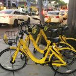 South Miami Ofo Bikes Rental