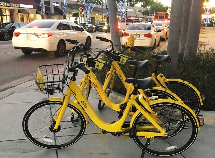 South Miami Bike Rental Yellow Ofo Bikes Are So Convenient