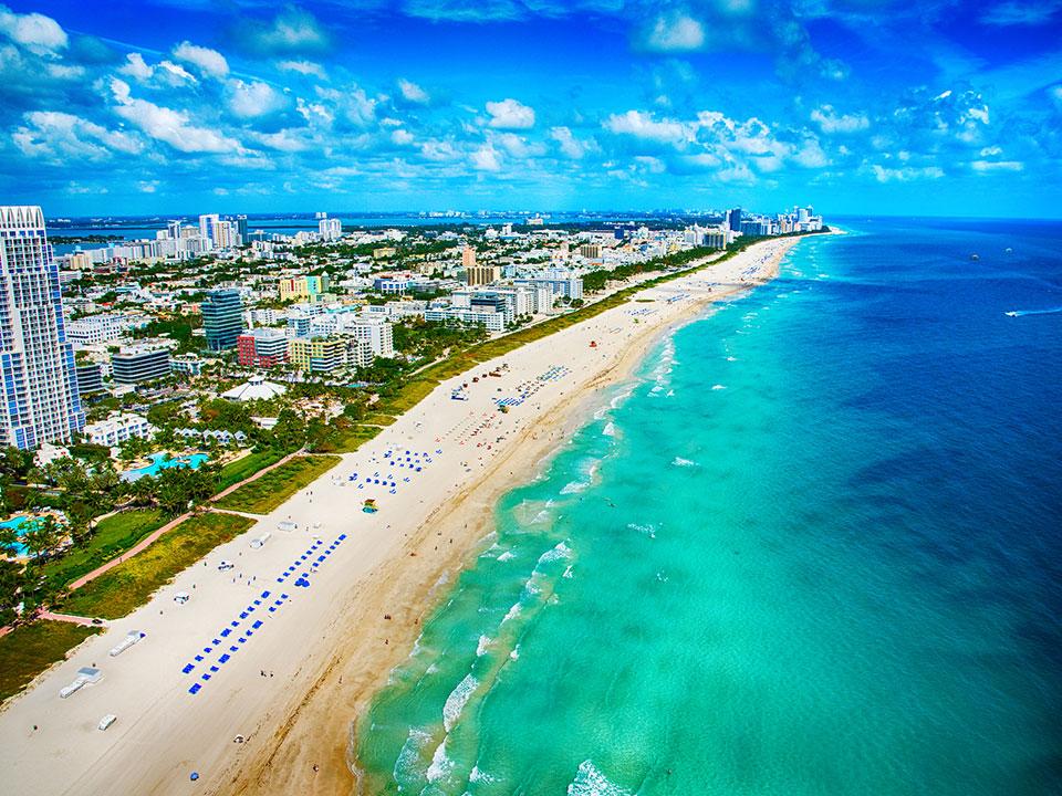 Reef Line Miami